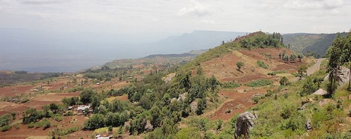 Hill Ten, Kenya
