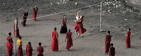 Monks playing volleyball